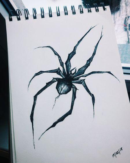 #spider #drawing #sketch #tattoosketch #draw #Artist #art #ArtWork #EyeEmNewHere