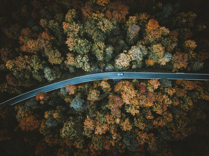Autumn Autumn colors Autumn Leaves Drone  Drones Autumn Beauty In Nature Change Day Drone Photography Dronephotography Droneshot Forest Growth Leaf Nature No People Outdoors Scenics Tranquility Transportation Tree