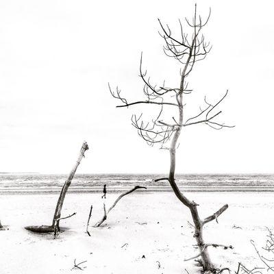 EyeEm Best Shots - Black + White Bw_collection Blackandwhite
