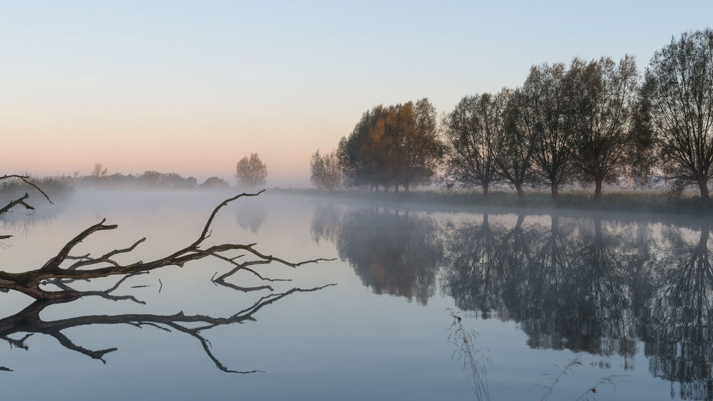 Naturpark Westhavelland Bare Tree Beauty In Nature Branch Brandeburg Day Fog Havelland Hazy  Hohennauen Lake Mist Nature No People Outdoors Parey Reflection Scenics Sky Tranquil Scene Tranquility Tree Water Winter