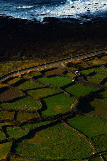 walled in fields, right up to the sea Agriculture Beauty In Nature Birdseye View Colors Contrasting Textures Day Faja Grande Fieldscape Flores Island, Azores Green Color Green Color Illuminated Landscape Lava Flow Looking Down From Above Nature Outdoors People Road Rocky Coastline Rural Scene Shadow Shoreline Walled In Fields Traveling Home For The Holidays Flying High