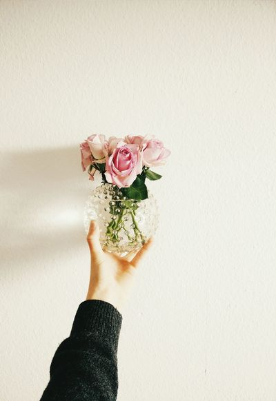 Another picture with my Oneplusone. Minimalism Vscocam Roses