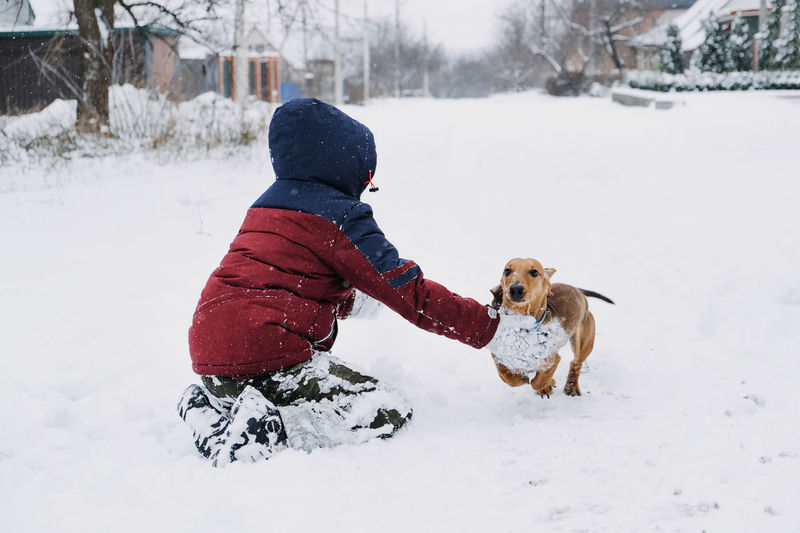 Dog playing with snow on field during winter