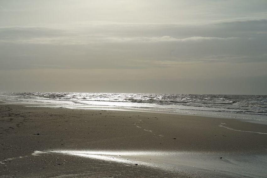 Sea Beach Sand Beauty In Nature Nature Scenics Horizon Over Water