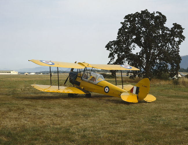 A de Havilland Tiger Moth trainer aircraft from World War Two parked in a field. Aircraft Airplane Biplane De Havilland Field Grass Tiger Moth Trainer World War 2 World War Two Yellow