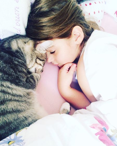 High Angle View Of Girl Sleeping With Cat On Bed At Home