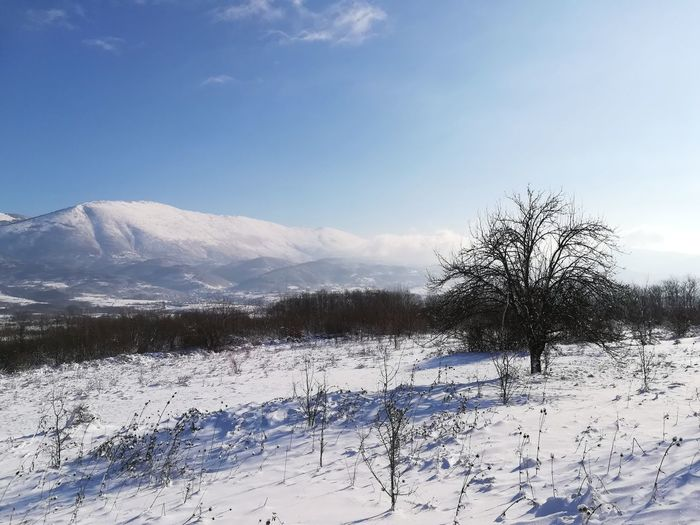 Scenic view of snowcapped field against sky