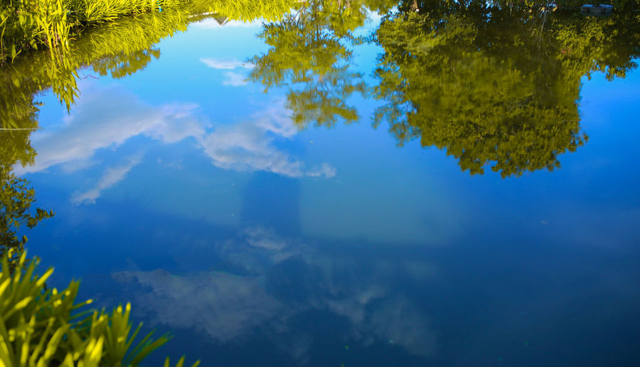 Water reflection with sky. Beauty In Nature Blue Cloud - Sky Forest Green Color Lake Nature No People Outdoors Plant Reflection Sky Tree Water