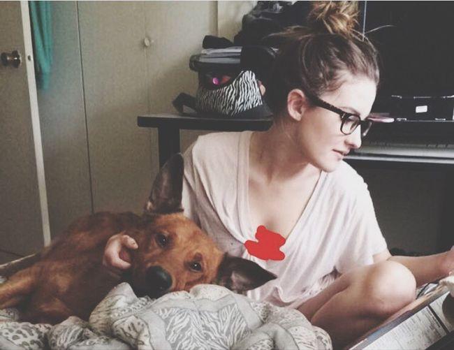 First Eyeem Photo #dog Like Cute Instagram Follow Rottweiler Germanshepard Model Material Love Big Baby