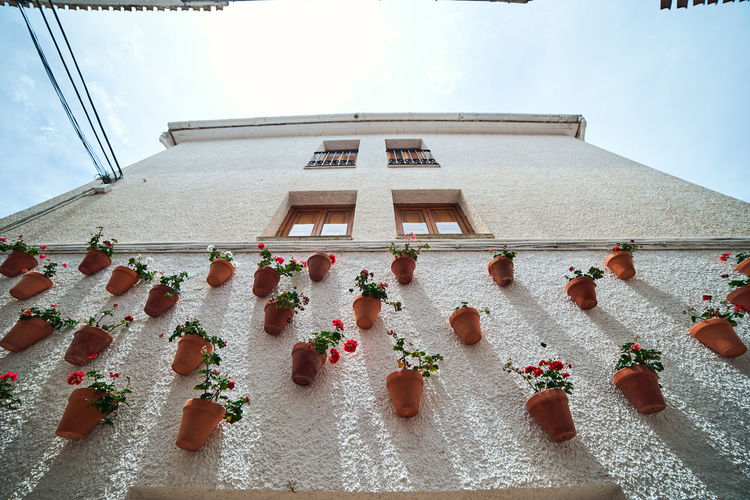 Low angle view of decorated hanging by building against sky
