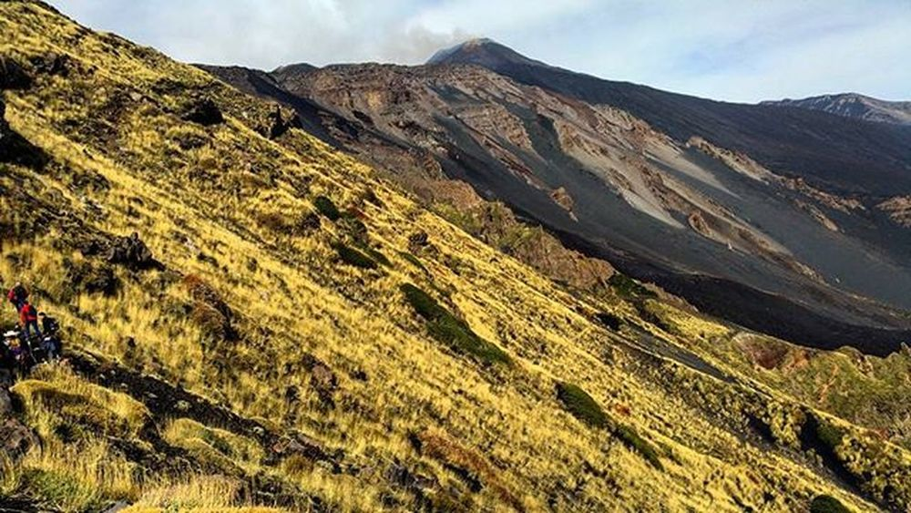 Etna...excursion..panoramic! Italy Sicily Catania Etna Mountain Volcano Excursion Great day Panoramic 180degrees Relax Stopnoises Wild Greatday Nature Nature lovers Downhill Trekking Awesomeplaces Green Trees