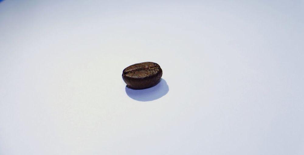 Coffee el granito de café