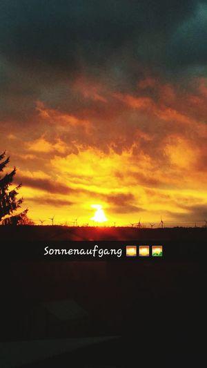 Bald Ist Der Sommer Da Sonnenaufgang Sonne Sonnenschein  Rot Himmel♥ Yesrerday Gestern *_* Today Last Day Of School❤