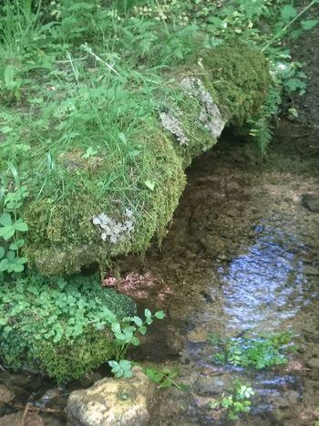 Water Ancient Stone Bridge