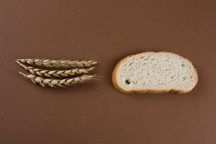Agriculture Background Bake Bakery Bread Bread Crumbs Breakfast Brown Bun Cereal Closeup Corn Crop  Crumbs Crust Delicious Design Diet Directly Above Dough Ear Eat Flat Lay Flour Food Fresh Gourmet Grain Healthy Isolated Loaf Meal Minimalism Natural Nutrition Object Organic Pastry RYE Sliced Sliced Bread Snack Studio Tasty Texture Top View Wheat White Whole