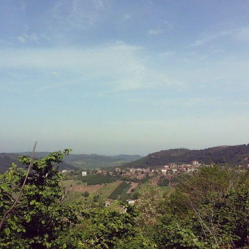 ilkbaharin güzelliği ;) Ilkbahar Kopru köy Sakarya Karasu ortaköy doğa orman findik findikbahcesi yesillik dağ tepe