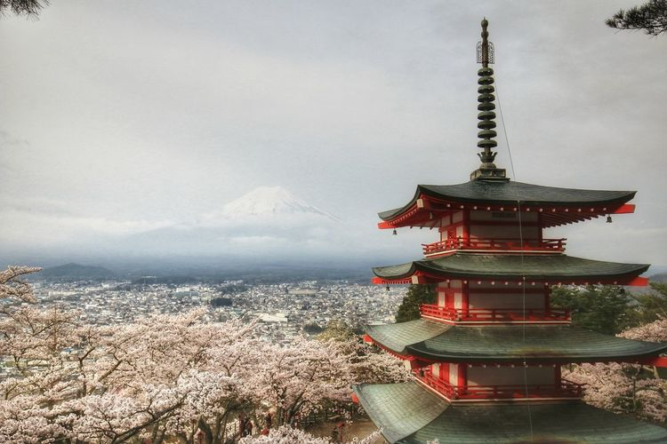 Landscape Mt.Fuji Snow Japannature Beach Red Sea City Sky Architecture Horizon Over Water Building Exterior Cloud - Sky Pagoda Place Of Worship Temple Temple - Building Religion Buddhist Temple