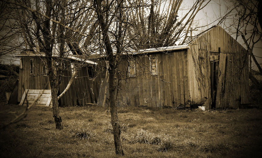 Abandoned Architecture Bare Tree Building Exterior Built Structure Day Decay Grass Nature No People Outdoors Sepia Shed Sky Tree Tree Trunk Trees
