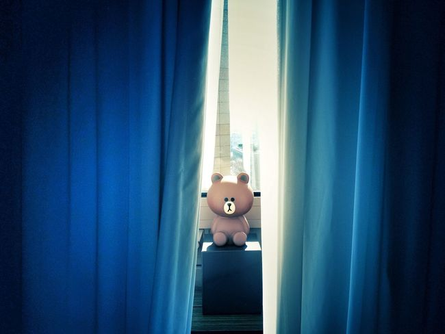 Curtain Indoors  Toy Hotelroom Linefriends Bear Seoul, Korea Light In The Darkness My Year My View