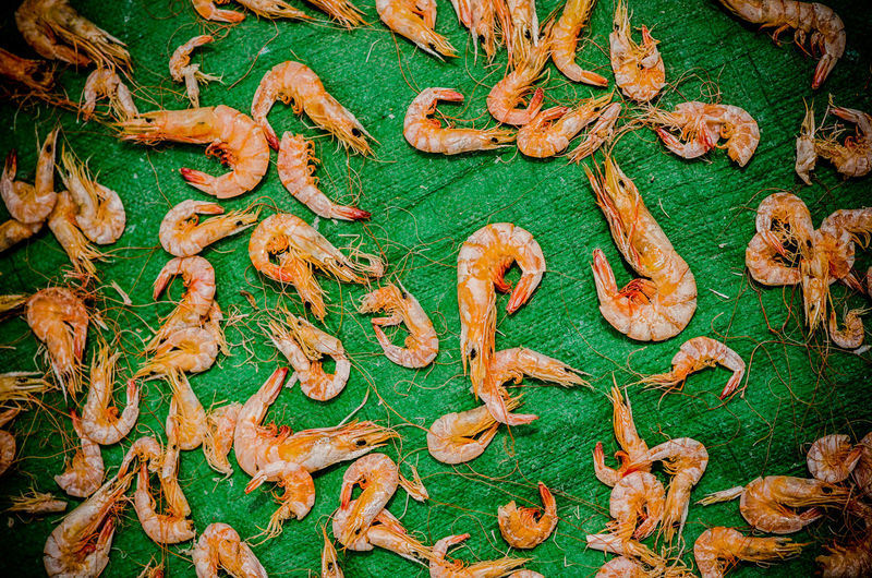 Directly above shot of prawns drying on green textile