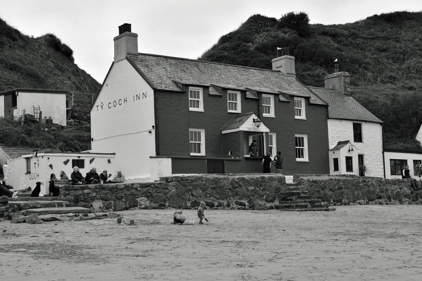 Animal Themes Architecture Building Exterior Built Structure Day House Nature No People Outdoors Porthdinllaen Beach Sky Tree