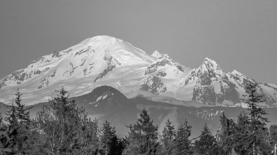 Mt. Baker Washington Snow Mountain Cold Temperature Tree Scenics - Nature Nature Beauty In Nature Snowcapped Mountain No People Day Tranquil Scene Tranquility Environment Land Mountain Range Landscape Outdoors