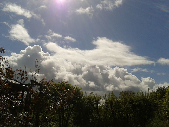 this morning's horizon Cloudporn #horizon #amlp #skies