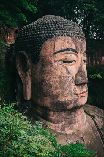 Giant Buddha statue at Leshan, Sichuan Province, China Ancient Art Buddha Buddha Buddha Statue Buddhism Buddhist Buddhist Temple Carving - Craft Product China Close-up Creativity Friendly Gazing Giant Looking Meditate Meditating Meditation Resting Sculpture Sichuan Sitting Soft Statue