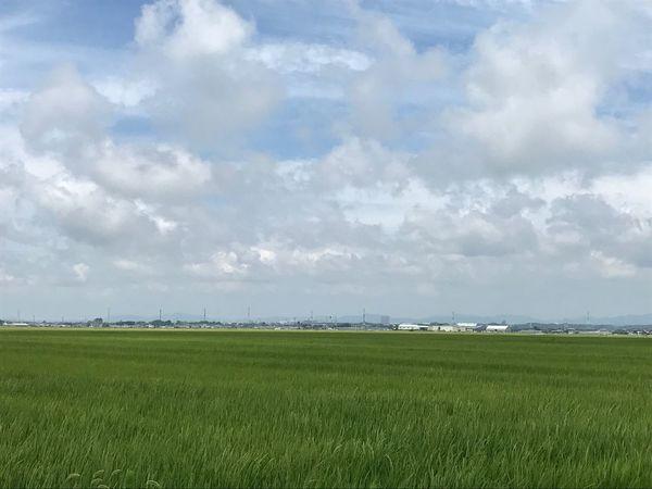Landscape Nature Tranquil Scene Cloud - Sky