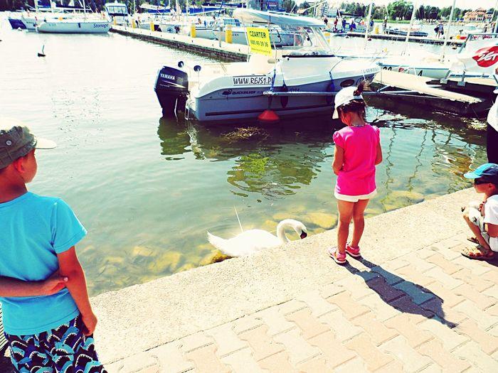 Water Leisure