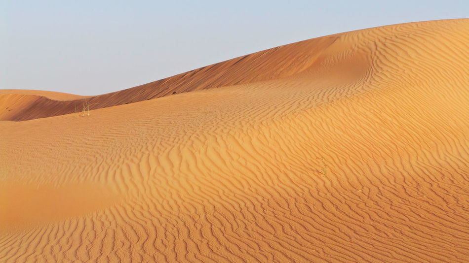 Arid Arid Climate Arid Landscape Barren Beauty In Nature Brown Clear Sky Copy Space Desert Extreme Terrain FootPrint Landscape Majestic Natural Pattern Remote Sand Sand Dune Tranquility The KIOMI Collection Dubai Travelling Traveling Hello World 43 Golden Moments