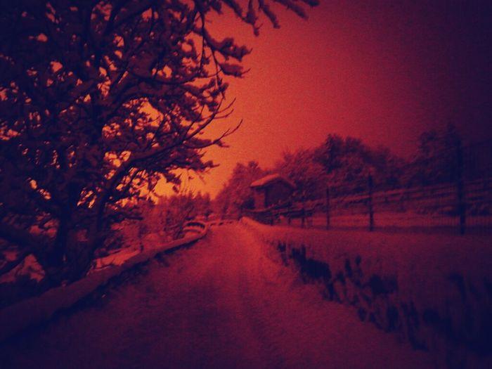 Snow Under The Snow Walking Around Winterwonderland