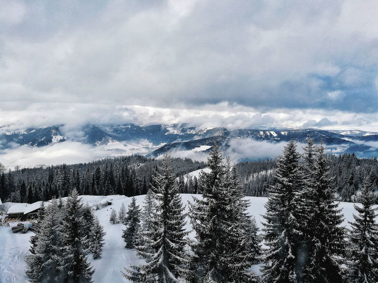 Ski Skicamp Gerlitzen Alpe Alps Alp Mountains Mountain Clouds Cloud Tree Austria Water Sea Wave Bird Beach Sky Horizon Over Water Cloud - Sky Lakeside Snow Covered Snowcapped Calm Mountain Range Snowcapped Mountain Foggy Mountain Road