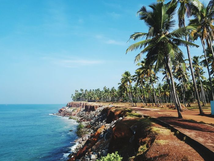 cliffs near varkala Varkala Cliff Sea And Sky Nature_collection Travel Destinations India View Landscape Skyandsand Sea Tree Beach Nature Water Beauty In Nature Scenics Tranquility Tranquil Scene Palm Tree Vacations