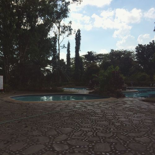 Pools and Trees are Relaxing! Peace And Quiet Swimming Escaping From The Heat Amazing Swimming Pool Swimming Trees Green Environment Green Blue Amazing Philippines Relaxing Antipolo Photography