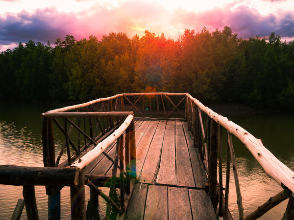 Wooden bridge extending into the river of mangrove forest with sunset background, as a beautiful sunset view point of southern sea of Thailand Sunset_collection Beauty In Nature Bridge Day Forest Jetty Lake Mangrove Nature No People Outdoors Pier River Scenics Sky Sunset Tranquil Scene Tranquility Tree Water Wood - Material EyeEmNewHere