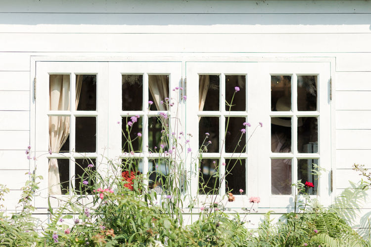Building Exterior Window Architecture Built Structure Building Plant Flowering Plant Glass - Material Flower Day No People Outdoors Nature House Transparent Residential District Growth Reflection White Color Entrance Window Frame