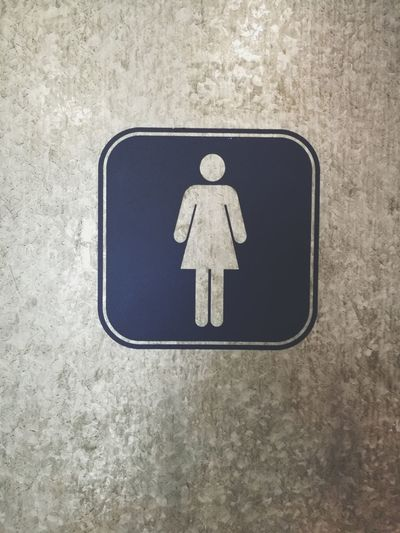 Wc Girlsroom Ladies Toilet Women Door Differing Abilities Wheelchair Access Wheelchair Human Representation Male Likeness Information Symbol Female Likeness Public Restroom Information Sign Toilet