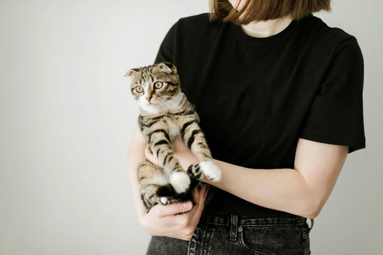 Midsection of man holding cat against white wall