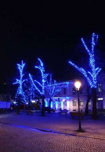 Potsdam Weihnachtsmarkt Blauer Lichterglanz Illuminated Night Celebration Cold Temperature Winter Architecture Outdoors IPhone 7 Plus Weihnachten 2016 Christmas Lights Christmastime Christmas Decoration Christmas Around The World