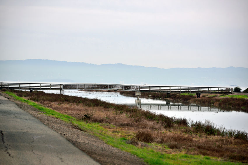Hayward Regional Shoreline Park 1 San Lorenzo, Ca. Tidal wetlands Marsh San Lorenzo Creek Creek crossing Footbridge Pedestrian /Bicycle Bridge san francisco bay trail Bird Habitant san francisco bay Land used for salt production 1850-1980's Fresh Water meets Salt Water walkway Nature bea San Lorenzo, Ca. Tidal Wetlands Marsh San Lorenzo Creek Creek Crossing Footbridge Pedestrian /Bicycle Bridge San Francisco Bay Trail Bird Habitant San Francisco Bay Land Used For Salt Production 1850-1980's Fresh Water Meets Salt Water Walkway Nature Beauty In Nature Nature_collection Landscape_Collection Landscape_photography Reflections Reflections In The Water Marin Headlands Horizon Over Water Sky