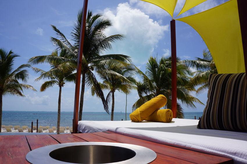 Elite Vacation! Sunshine ☀ The Life