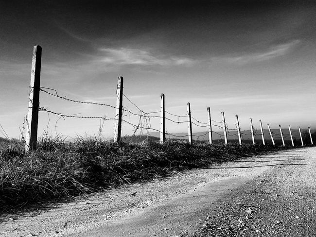 Barbed Wire Pilons Sky Cloud - Sky Landscape Outdoors Tranquility Rural Scene Nature No People Blackandwhite Hicontrast