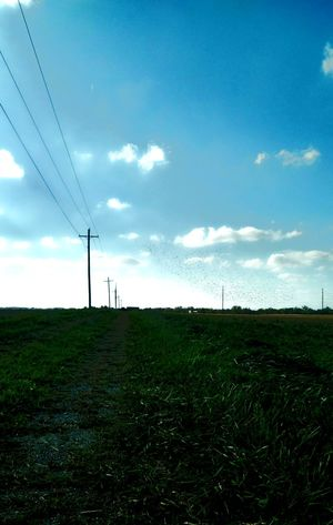 Scenics Full Frame Day Tranquility Blue Sunlight Outdoors Sky Bright Murmurations Murmuration Grassy Lane Countryside Simple Photography