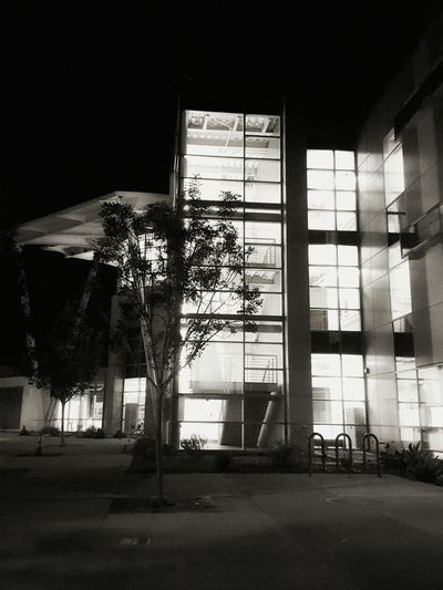 Escape Plan In Black And White Escape Route From My Point Of View Fine Art Staircases Courtyards Outdoors Nights  Building Architecture EyeEm Perspective Abstract Black And White ForTheLoveOfPhotography Eye4photography  Architecture Buildings Black And White Photography Eyeemphotography Long Beach California