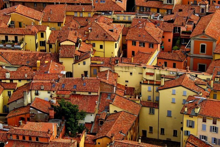 Architecture Bologna, Italy Building Exterior Clay Color Ocra Red Roofs Red Rooftops Roof Rooftops