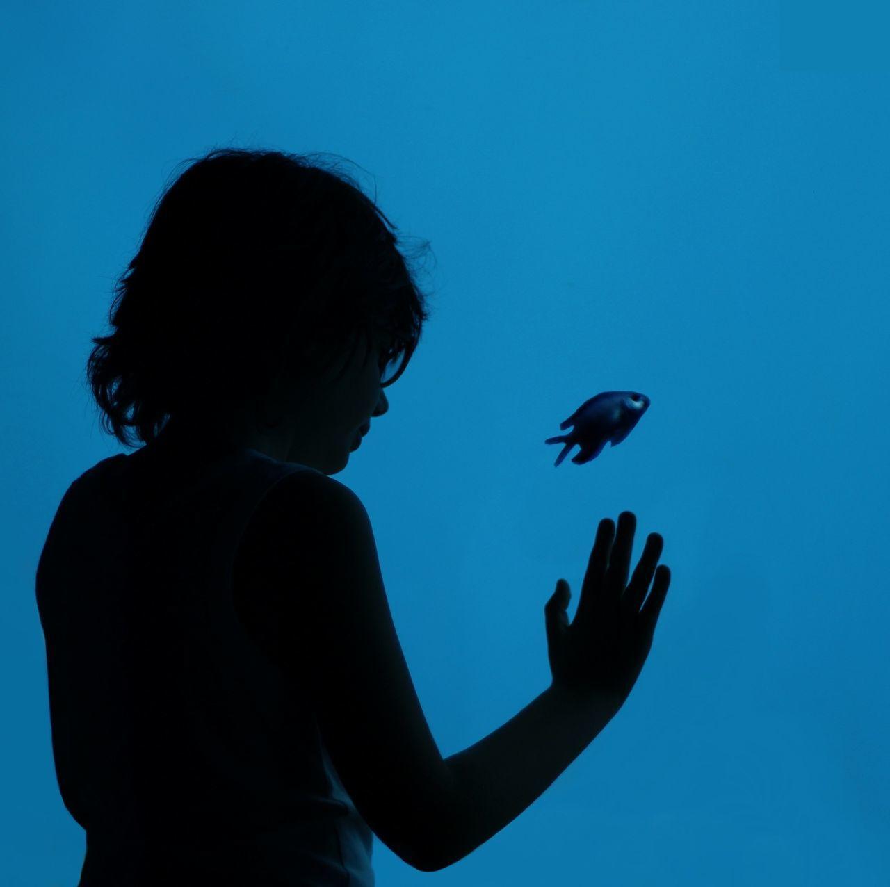 Rear View Of Boy Looking At Fish In Aquarium