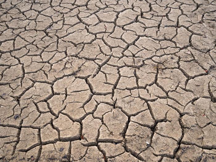 dried earth Aridness Barren Barren Land Barren Landscape Drought Dry Earth Ground Heatwave Hot Natural Disaster