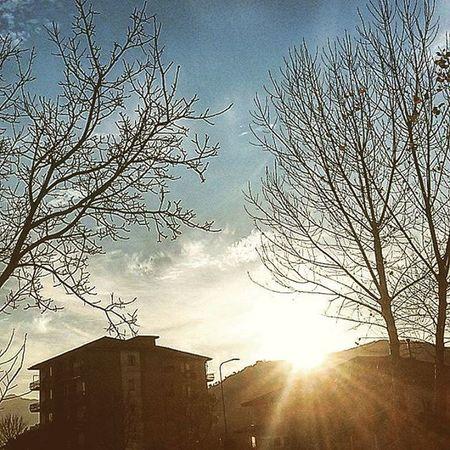 🙇 Sky Skyporn Skyline December Sun Sunday Evening Tree Country Igers Igersitalia Avellino Irpinia Picoftheday Pic Picture Imagine Life Live