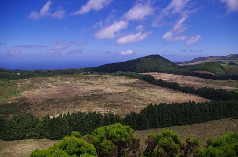 Azores Green Terceira Island Beauty In Nature Blue Cloud - Sky Fields Island Landscape Mountain Mountain Range Nature No People Outdoors Sky Terceira Tranquil Scene Tranquility Tree Woods